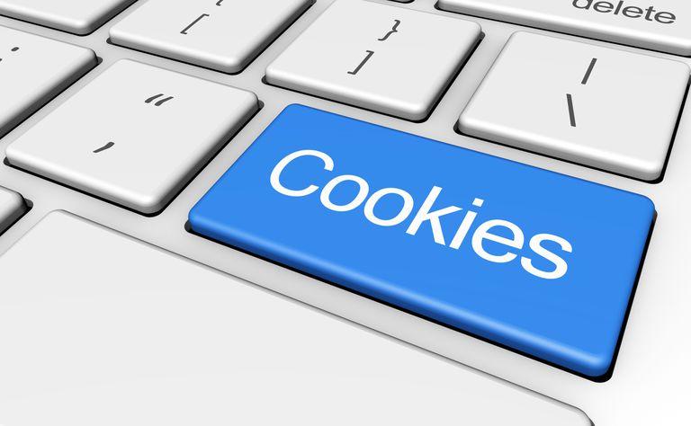 Política de Privacidade e Cookies e Termos de Uso do ProgrameViagem